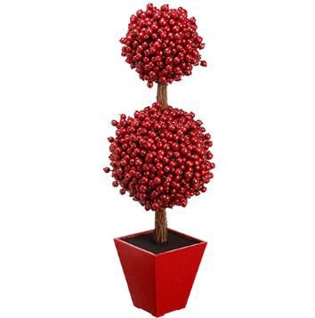 Berry Topiary - Potted