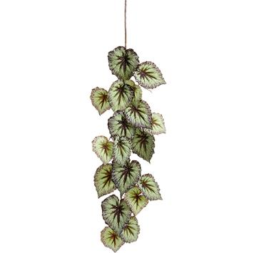 Begonia Leaf Hanging Spray - Green/Purple