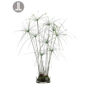 Paprus Grass in Vase
