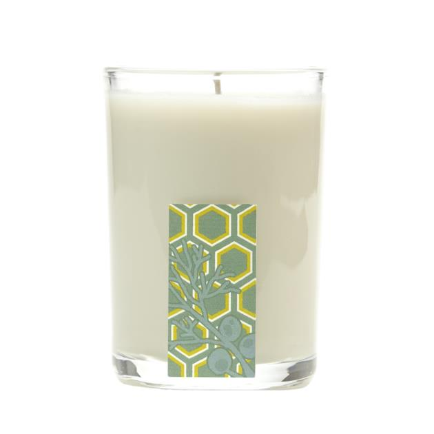 Cedar Mint Glass Candle