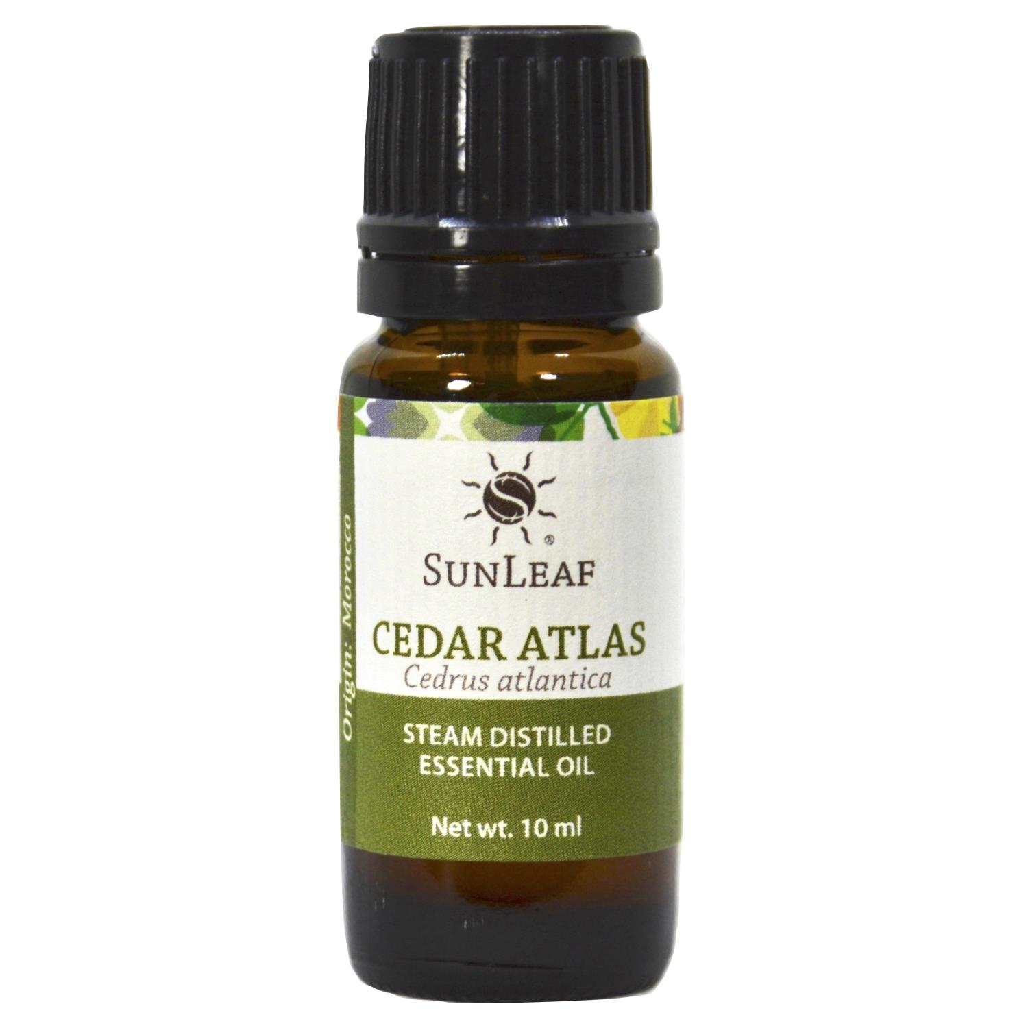 Cedar Atlas Essential Oil - 15 ml