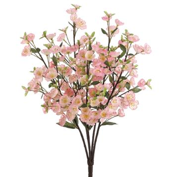 Apple Blossom Bush - Pink
