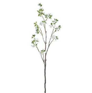 Cherry Blossom Branch - White