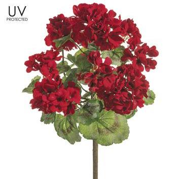 Geranium Bush - Red UV Protected