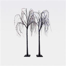 Black Weeping Willow Tree