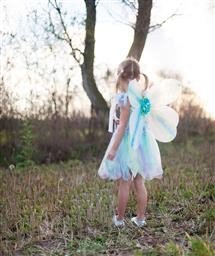 Butterfly Dress with Wings and Wand Md