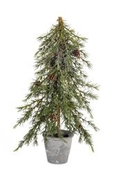 Potted Pine Tree 22'