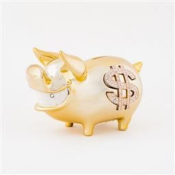 Biggy Piggy Bank